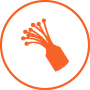 orange-fibre-icon-circle